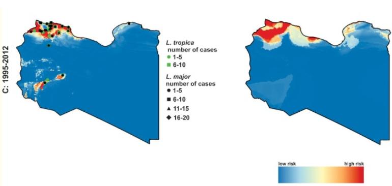 leishmania libia.png